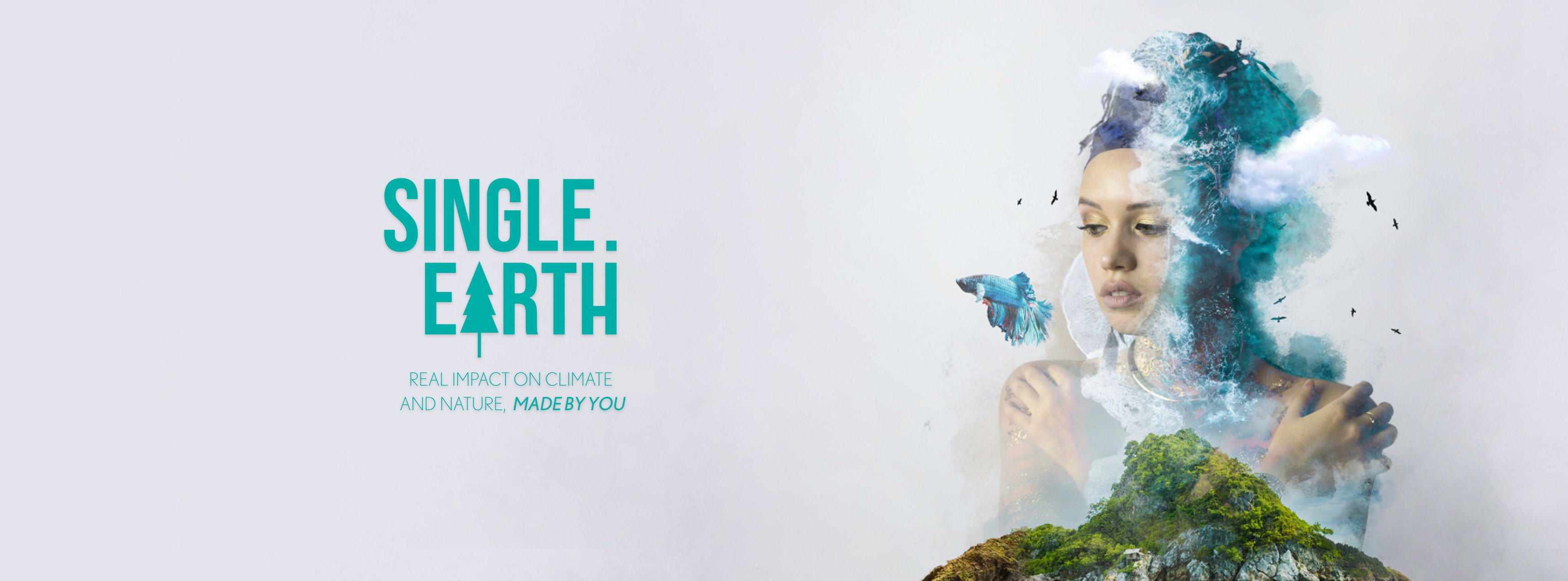 Single Earth Impact on Climate