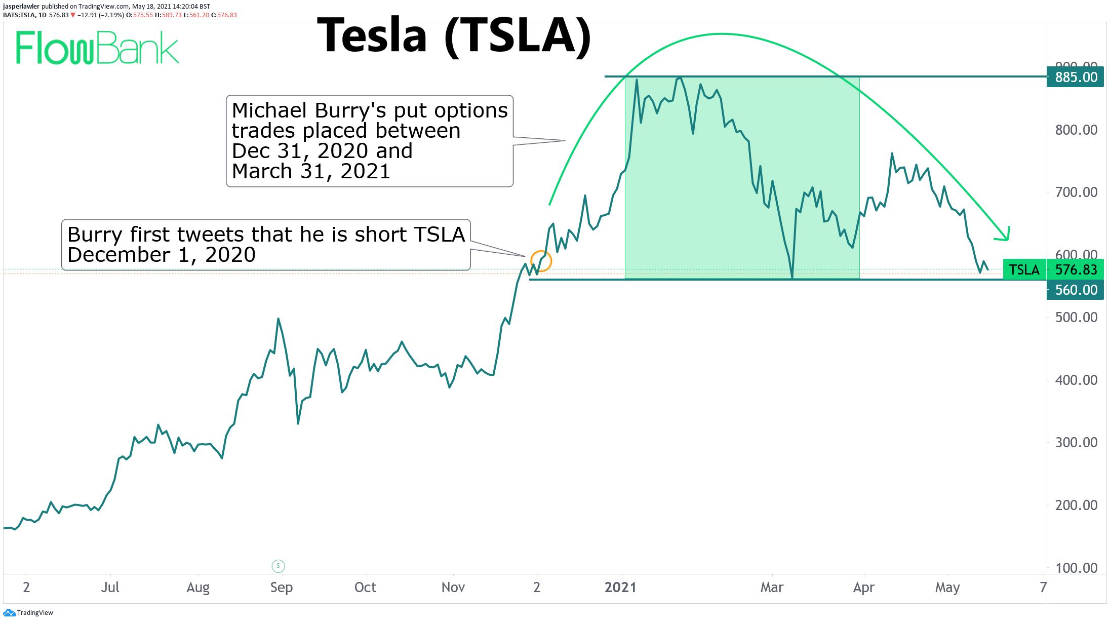 Burry TSLA short
