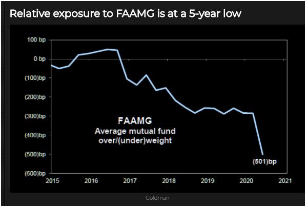 mutual fun exposure to FAAMG stocks
