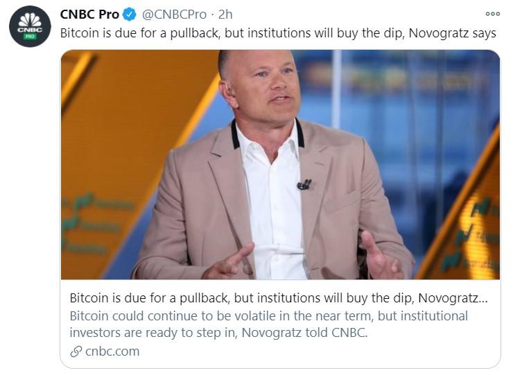 novogratz buy the dip_tweet
