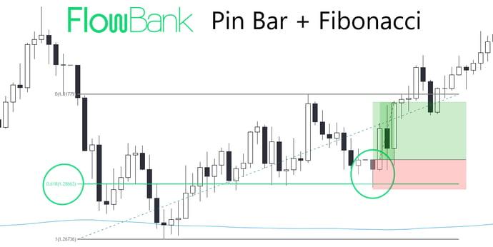 pin bar & fibo