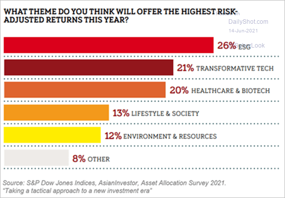 Which themes will offer the highest risk-adjusted returns in 2021?