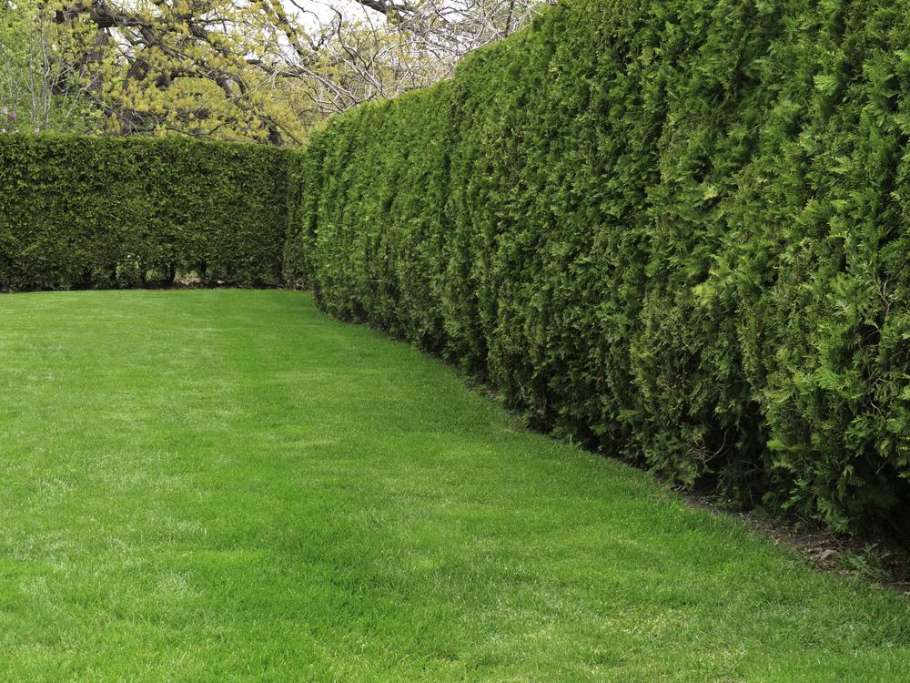 3 steps to go short ETFs as a hedge