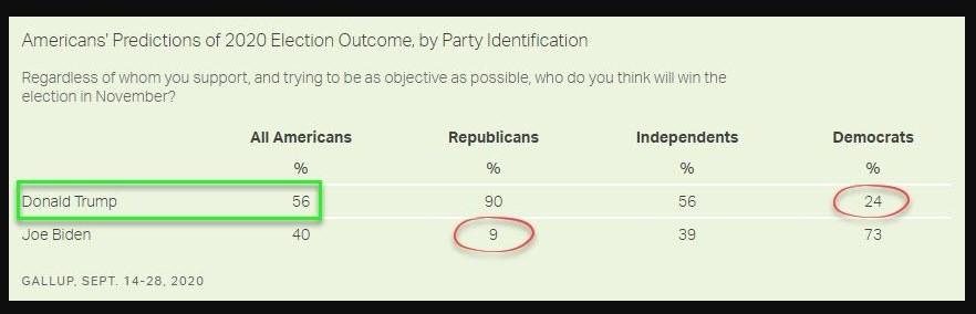 Gallup Survey: American's perception of 2020 election outcome