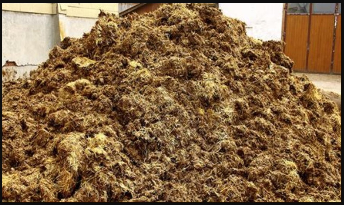 Californians can now power their homes with manure but they pay a premium for this