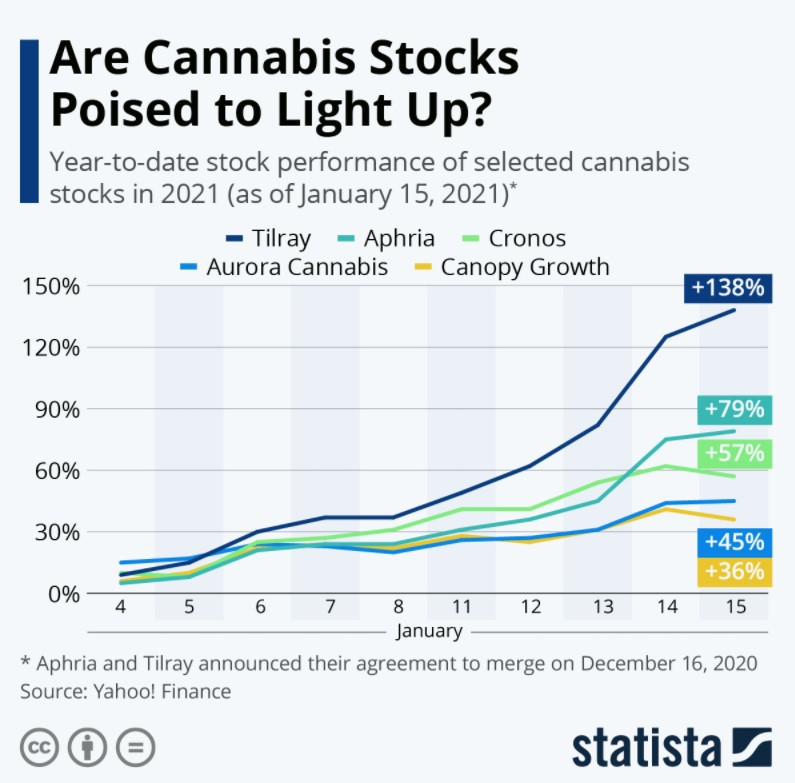 Selected cannabis stocks since the start of the year