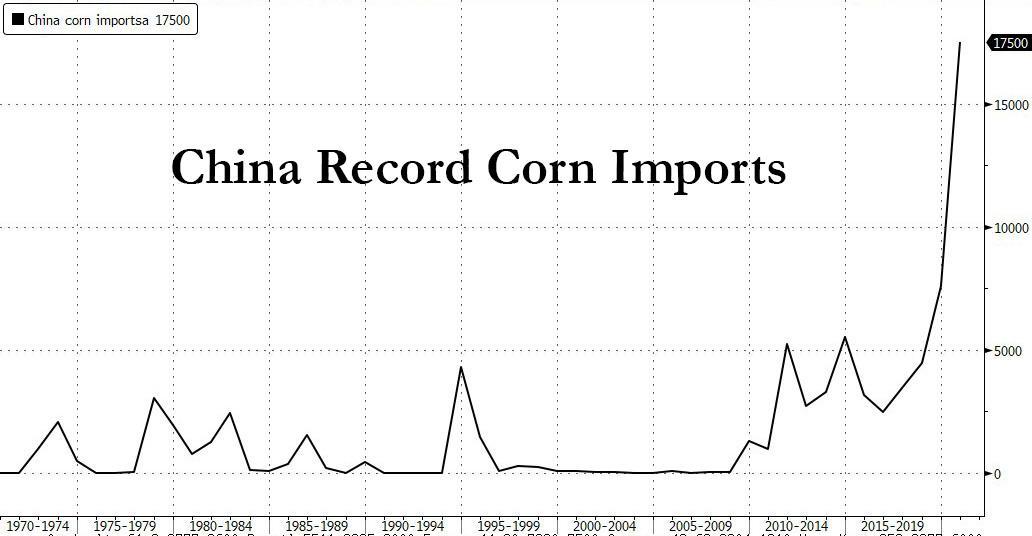 China Corn imports