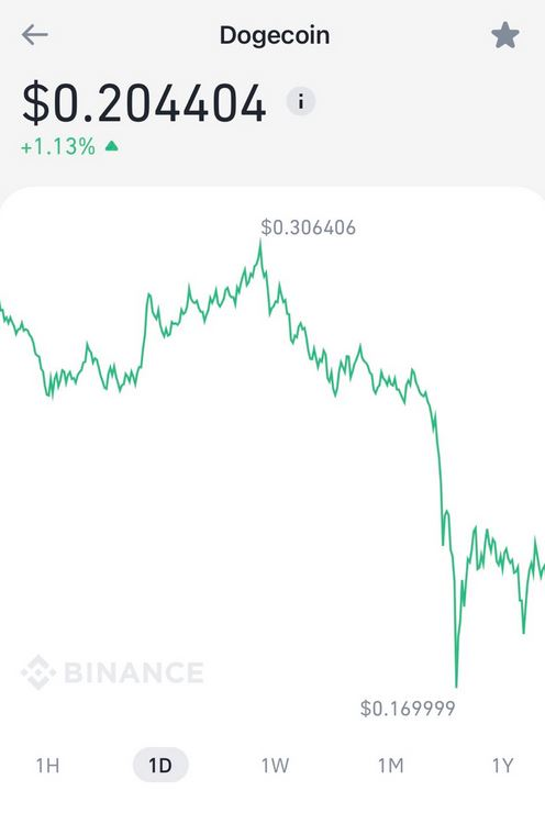 Dogecoin lost 1/3rd of its value in one hour after news of Biden capital gains tax