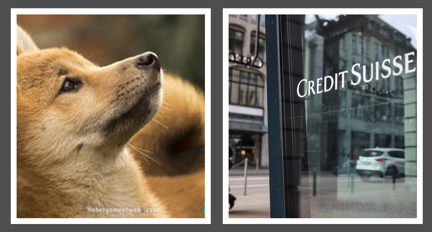 Dogecoin vs. Credit Suisse