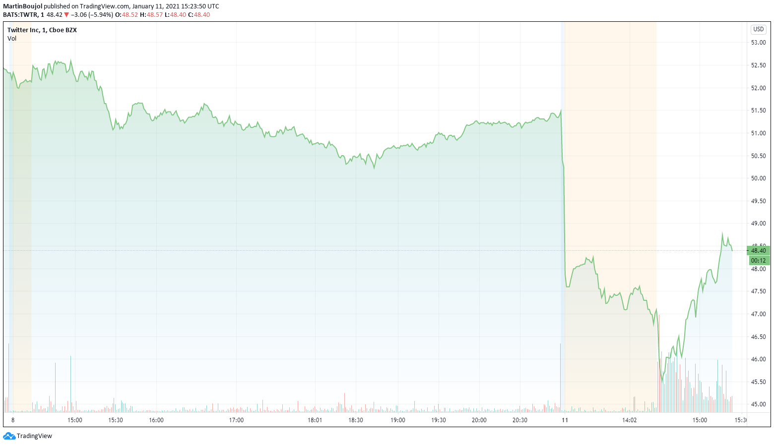 Twitter stock plunges